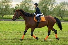 Jockey des kleinen Mädchens, der ein Pferd über Land in der Berufsausstattung reitet Lizenzfreies Stockfoto