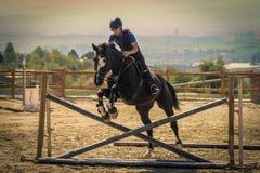 Jockey die een snel volbloed- paard berijden Stock Foto