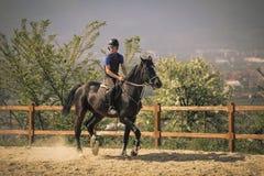 Jockey die een snel volbloed- paard berijden Royalty-vrije Stock Foto