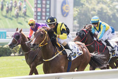 Jockey Dylan Mo Hin-tung first win in Hong Kong Stock Image