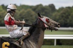 Jockey Eddie Castro aboard Happy Now Stock Photography