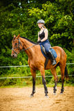 Jockey girl doing horse riding on countryside meadow. Taking care of animals, horsemanship, western competitions concept. Jockey girl doing horse riding on royalty free stock image