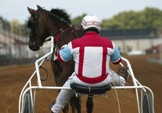 Jockey and Horse. A horse jockey on a sulky racing his horse- as seen from behind Royalty Free Stock Photos