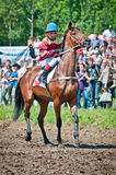 Jockey on horse befor the start Stock Photography