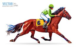 Jockey on horse. Champion. Horse racing. Hippodrome. Racetrack. Jump racetrack. Horse riding. Racing horse coming first Stock Images