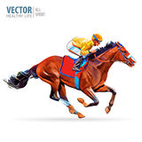 Jockey on horse. Champion. Horse racing. Hippodrome. Racetrack. Jump racetrack. Horse riding. Racing horse coming first Royalty Free Stock Images