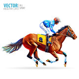 Jockey on horse. Champion. Horse racing. Hippodrome. Racetrack. Jump racetrack. Horse riding. Racing horse coming first Royalty Free Stock Photography