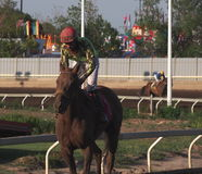 Jockey In Horse Race Royaltyfria Foton