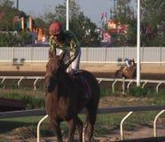 Jockey In Horse Race Royalty Free Stock Photos