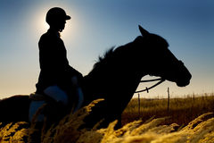 Jockey  and horse silhouettes Royalty Free Stock Photography