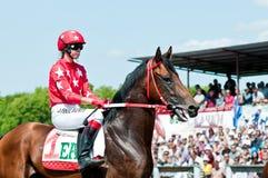 Jockey on horse before the start Royalty Free Stock Photo
