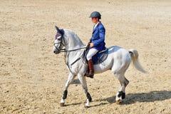 jockey horseback riding on white horse royalty free stock photography