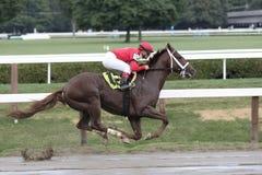 Jockey javier Castellano aboard The Mixer Stock Images