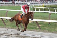 Jockey Jose lezcano aboard Back Away in the Post P Stock Photo