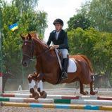 Jockey jumps over a hurdle Stock Image