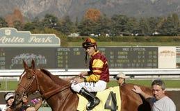 Jockey Martin Pedroza Lizenzfreie Stockfotografie