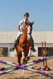 Jockey med den fullblods- hästen Arkivbilder