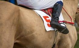 Jockey med det startande numret fem royaltyfri foto