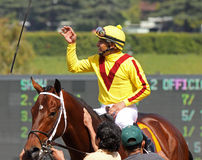 Jockey Mike Smith Celebrates a Win Royalty Free Stock Images
