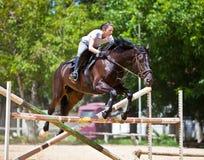 Jockey mit dem Pferdenspringen Lizenzfreies Stockfoto