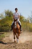 Jockey mit reinrassigem Pferd Stockbild