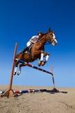 Jockey mit reinrassigem Pferd Stockfotos