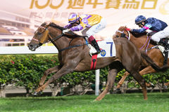 Jockey Olivier Doleuze in Hong Kong Royalty Free Stock Images