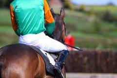 Jockey op raspaard A Royalty-vrije Stock Afbeelding