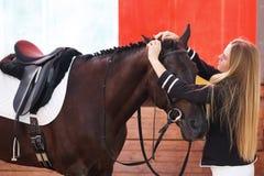 Jockey prepares a horse Stock Photography