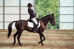 Jockey rides horse in arena Royalty Free Stock Photography