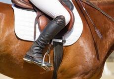 Jockey riding boot Royalty Free Stock Photos