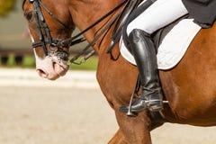 Jockey riding boot in the stirrup royalty free stock photos