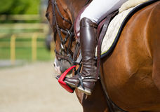 Jockey riding boot in the stirrup Royalty Free Stock Image