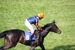 Jockey Royalty Free Stock Photography