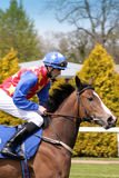 Jockey Stock Photos