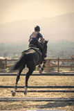 Jockey riding a fast thoroughbred horse. Equestrian sports, Black horse approaching.The jump, shooting from the rear. Jockey riding a fast thoroughbred horse stock photography