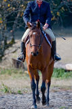 Jockey riding horse on track. Close up of jockey riding brown horse on track through countryside Stock Image
