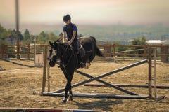 Jockey riding a thoroughbred horse Royalty Free Stock Photography