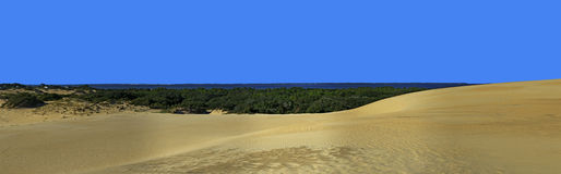 Free Jockey S Ridge And Roanoke Sound Panorama Royalty Free Stock Images - 60545539