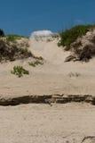 Jockey ` s Ridge Sand Dune in de Buitenbanken, Noord-Carolina Royalty-vrije Stock Afbeeldingen