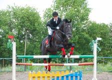 Jockey springt über eine Hürde Stockbild