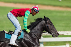 Jockey Training Closeup de cheval de course Photos stock