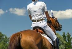 Jockey under hästkapplöpningen royaltyfria foton