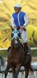 Jockey Victor Espinoza Aboard Setsuko Royalty Free Stock Image