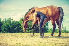 Jockey woman taking care of horse royalty free stock photography