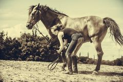 Jockey woman taking care of horse. Animal and human love, equine concept. Jockey woman taking care of horse stock photo