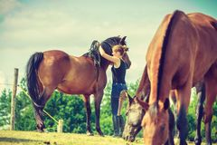 Jockey woman walking with horse on meadow Royalty Free Stock Images