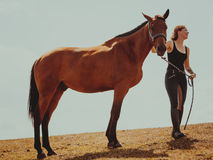 Jockey young girl petting brown horse. Taking care of animals, love and friendship concept. Jockey young girl petting brown horse on sunny day stock photos