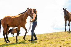 Jockey young girl petting brown horse. Taking care of animals, love and friendship concept. Jockey young girl petting brown horse on sunny day royalty free stock images