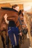 Jockey young girl petting and hugging brown horse royalty free stock photo